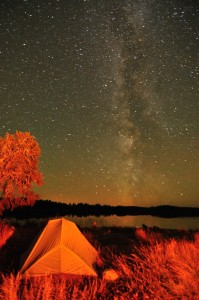 clearwater milky way night sky