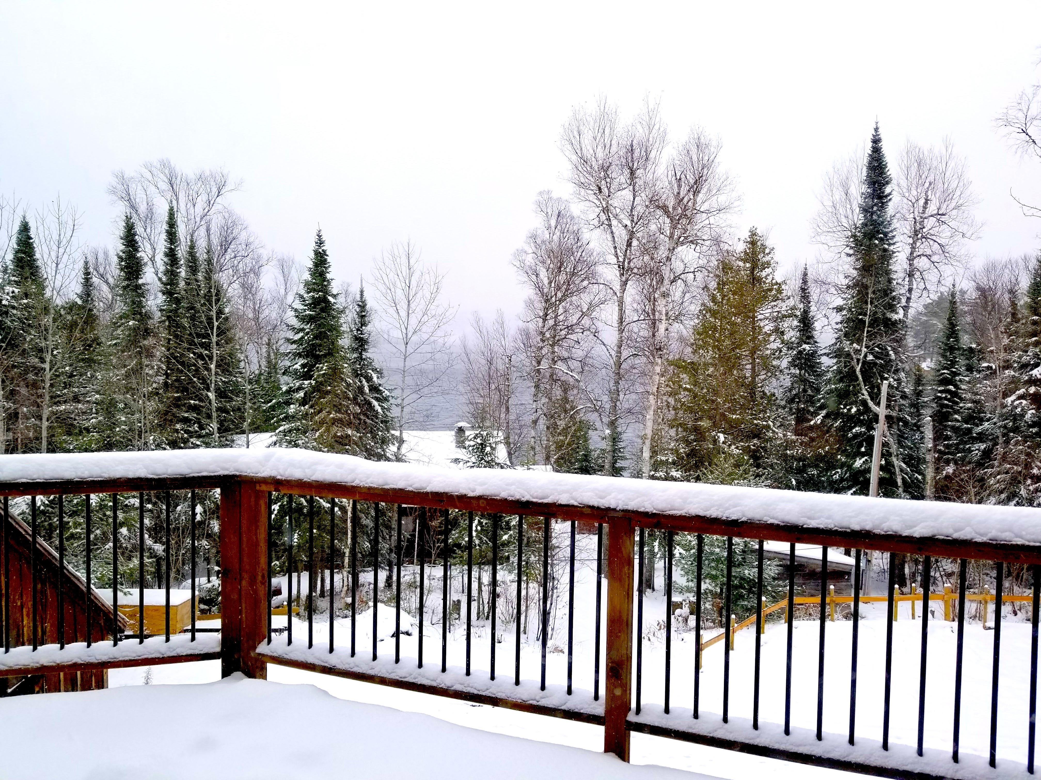 Winter Cabin Rentals