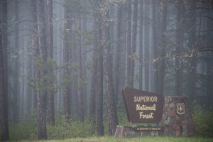 Campgrounds of the Superior National Forest: Gunflint District.