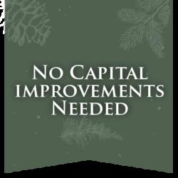 No Capital Flag-01
